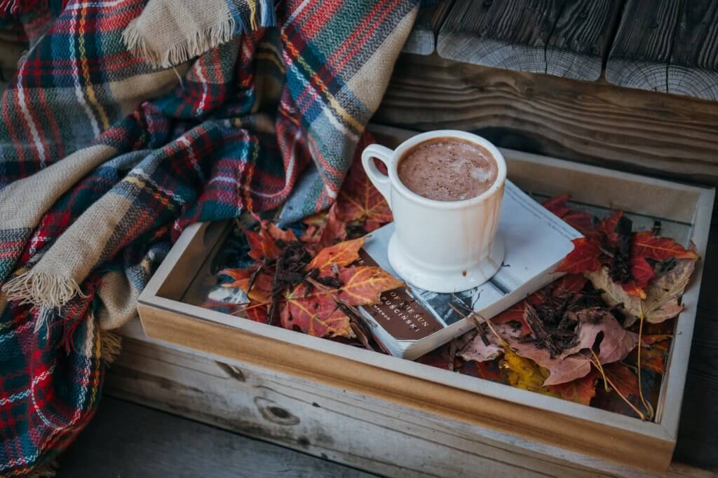 low-fat-vegan-cocoa-hot-chocolate-marshmallows-low-gi